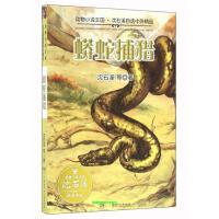 蟒蛇捕猎 动物小说王国 沈石溪自选中外精品 沈石溪