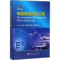 电磁环境效应工程 国防工业出版社