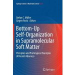 【预订】Bottom-Up Self-Organization in Supramolecular Soft Matt