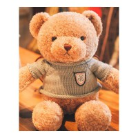 毛绒玩具熊 泰迪熊小熊公仔毛绒玩具熊抱抱熊布娃娃抱枕生日礼物送女友熊猫女