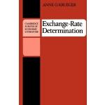 【预订】Exchange Rate-Determination