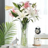 玻璃透明水养富贵竹百合花瓶摆件客厅插花干花北欧家用特大号