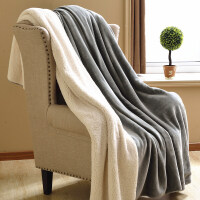 双层加厚保暖仿羊羔绒毛毯冬季盖毯珊瑚绒毯被子单人双人毯子纯色