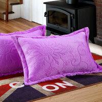 加厚珊瑚绒枕套法兰绒法莱绒枕头套单人学生双面加绒枕芯套一对装