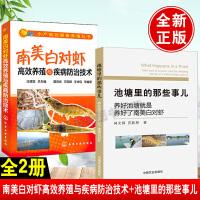 【全2册】南美白对虾高效养殖与疾病防治技术+池塘里的那些事儿 池塘化养殖丛书南美白对虾养殖技术教程农业水产养殖技术病害