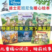 正版 迪士尼班尼兔暖心绘本系列6册 和爸爸度过的/桑普的新朋友等 迪士尼儿童绘本 3-6-8岁幼儿睡前故事书籍 辽宁少