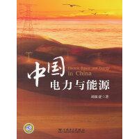 中国电力与能源(大能源观下,对电力与能源战略的思考 恢弘巨著 当当网独家销售)