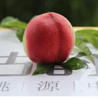 临沂特产 沂蒙有机蜜桃 5斤礼盒装 桃花古韵 生鲜水果