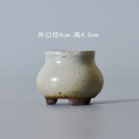 植物陶土花瓶陶瓷园艺迷你3-4厘米花卉拇指盆景观多肉花盆花器 金色 白色2号 特小