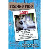 【预订】Finding Fido: Practical Steps for Finding Your Lost Pet