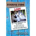 【预订】Finding Fido: Practical Steps for Finding Your Lost Pet