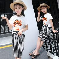 女童套装夏装新款韩版中大童时髦夏季时尚两件套儿童短袖衣服