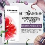 鲜切花品种图册