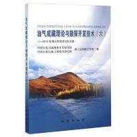 油气成藏理论与勘探开发技术六 2013年博士后学术论坛文集 地质出版社