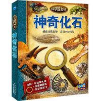科学放大镜:神奇化石