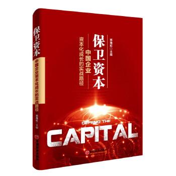 保卫资本:中国企业资本化成长的实践路径投资、金融