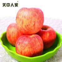 【包邮】关中人家 陕西特产红富士苹果水果不打蜡不催熟10斤全国包邮