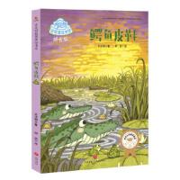 鳄鱼皮鞋 肖定丽 9787545531527 天地出版社 新华书店 品质保障