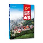 2021年中国分省系列地图册  山东
