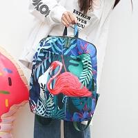 双肩包女韩版 学院风原创图火烈鸟考拉新款潮帆布包书包女包