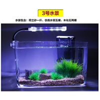 超白玻璃鱼缸办公桌鱼缸迷你小型鱼缸一体热弯鱼缸水培植物长方形
