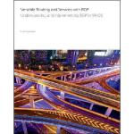 【预订】Versatile Routing and Services with BGP: Understanding a