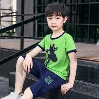童装男童套装夏装男童夏季T恤短裤两件套休闲中大童衣服