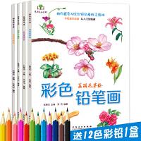 H4册套装 彩色铅笔画 花草水果美食动物手绘画彩铅画入门教程书 素描绘画教程 儿童成人画画美术教材 教
