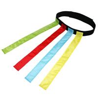 早教追逐飘带 幼儿园揪尾巴儿童户外运动玩具团体游戏带腰带 花色 一套4个飘带