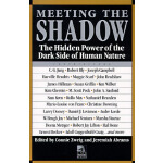 【预订】Meeting the Shadow The Hidden Power of the Dark Side of