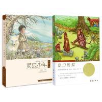 国际大奖小说・升级版--夏日历险+灵狐少年 经典畅销童书 儿童文学推荐