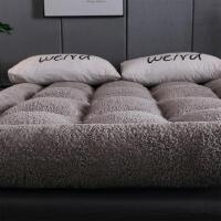 加绒薄款大床床垫软垫加厚软垫单人床垫可拆洗软床垫加厚毛绒