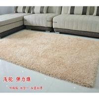 加厚榻榻米家用客厅地毯现代简约卧室床边垫茶几满铺沙发长毛地毯 浅驼色 +旗