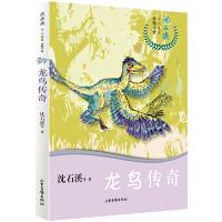沈石溪十二生肖动物小说――龙鸟传奇