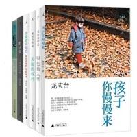 龙应台作品 全集 套装共6 册 银色仙人掌 +美丽的权利+目送+孩子你慢慢来+亲爱的安德烈+野火集 散文小说人生三书