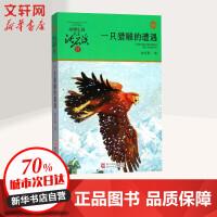 一只猎雕的遭遇(升级版) 浙江少年儿童出版社