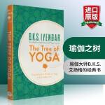 华研原版 瑜伽之树 英文原版 The Tree of Yoga 艾扬格 Iyenga 瑜伽入门基础指南原著 英文版进口
