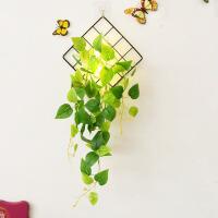餐厅北欧墙面简约墙上装饰品挂件墙壁创意家居装饰房间的小饰品 黑色 格+瓶+灯+长绿萝