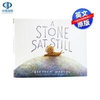 凯迪克银奖斯通一动不动地坐着 英文原版绘本 A Stone Sat Still 儿童读物图画书 亲子教育 进口书籍正版