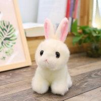 2018新款 生日礼物 仿真小白兔公仔可爱兔子毛绒玩具女生玩偶宝宝孩子抓机娃