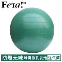 FETA 非他 瑜伽球无异味 蜂窝微孔发泡 加厚防爆专业瑜珈球 磨砂防滑孕妇分娩运动健身球 瑜伽配件 瑞士球普拉提球