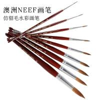 澳洲NEEF水彩画笔244 仿貂毛实木短杆圆头美术用画笔水粉水彩画笔