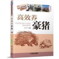 高效养豪猪 刘军 9787111590453