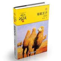 动物小说大王沈石溪・品藏书系:骆驼王子(升级版)