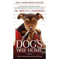 【现货】英文原版 一条狗的回家路 电影封面版 一条狗的使命 姐妹篇:只想陪在你身边 A Dog's Way Home