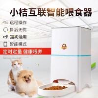 狗狗智能自动远程喂食器小桔宠物智能定时投食机猫咪远程定量喂食器包邮