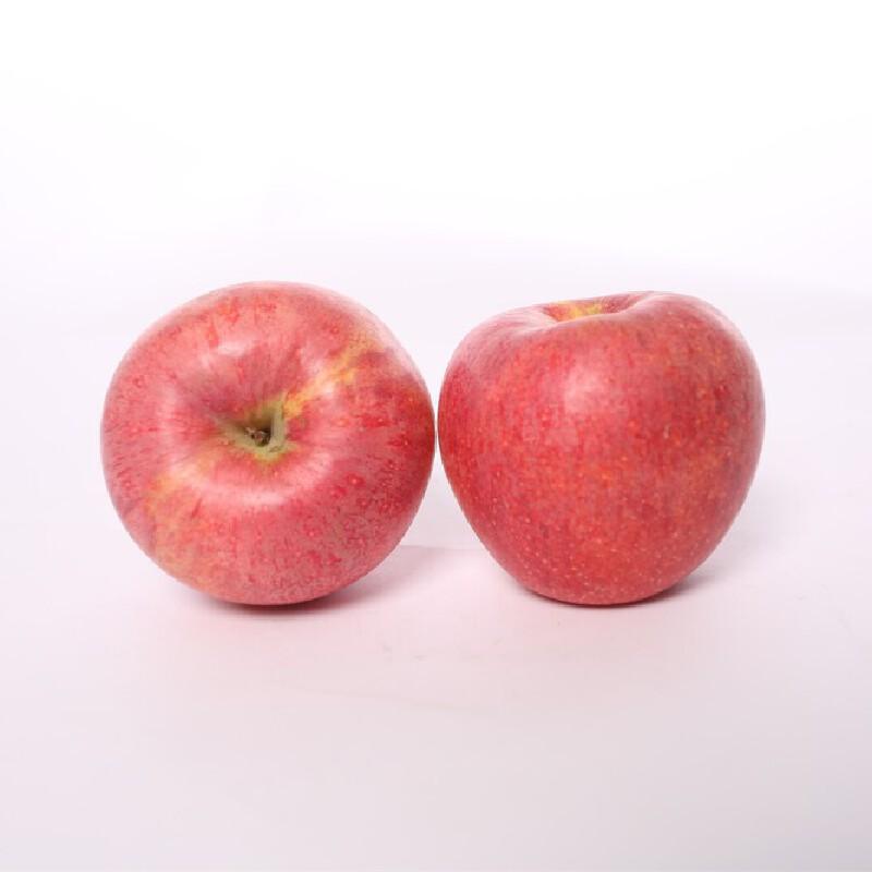 【陕西乾县馆】关中人家 陕西正宗红富士苹果  10斤装大果包邮现摘现发新鲜脆甜