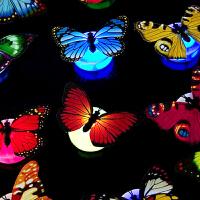 创意七彩发光蝴蝶3D立体LED装饰墙壁灯 蝴蝶墙贴三个装家居装饰 三只装发光蝴蝶 中