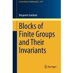 【预订】Blocks of Finite Groups and Their Invariants 9783319120