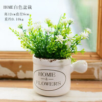 小清新仿真植物盆栽摆件多肉假花盆景家居客厅室内绿植装饰品摆设